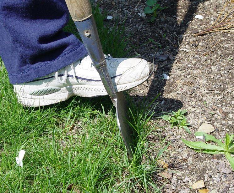 Vangare l'orto