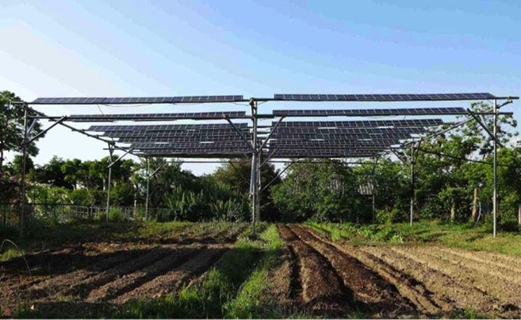 Fattoria solare campo coltivato