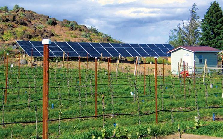 Pannelli fotovoltaici fattoria solare