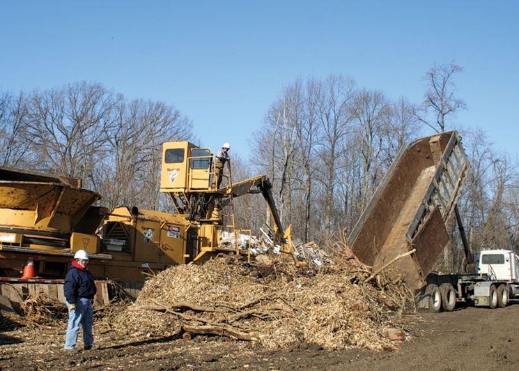 Scarti forestali come biomasse