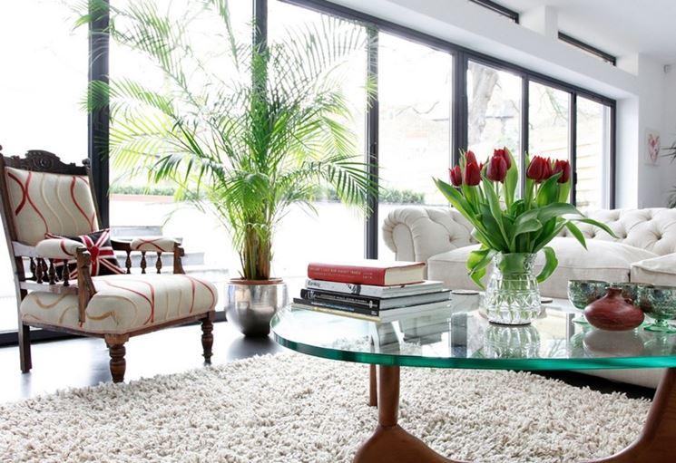 Splendido esempio di verde in casa