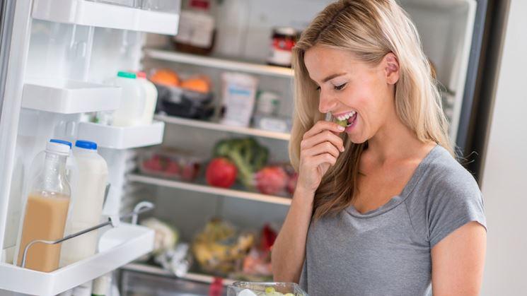 Le componenti di un frigorifero