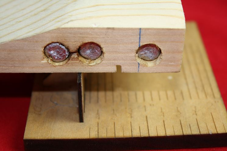 Sezione ripiano realizzato con legno d'abete
