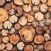 Tanti tipi di legno