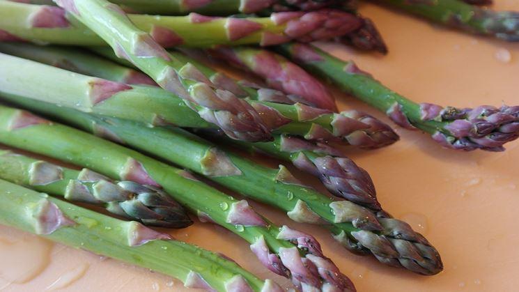 Asparagi raccolti