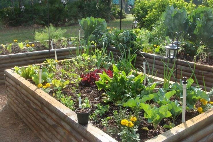 Orto biologico orto coltivare ortaggi - Compost casalingo ...
