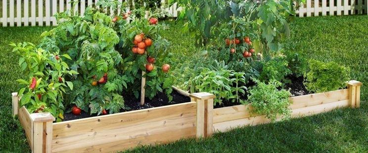 Consociazione verdure