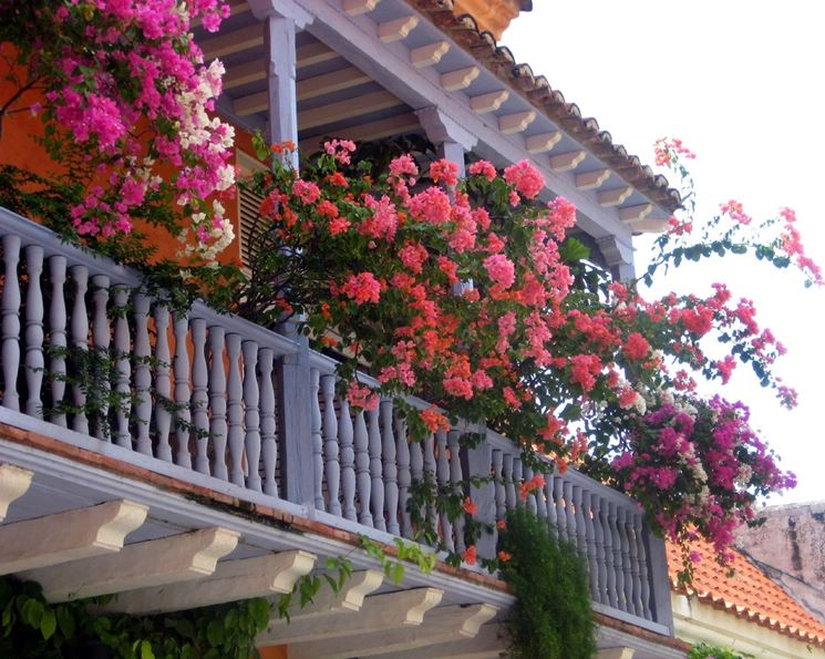 Balcone con tanti fiori