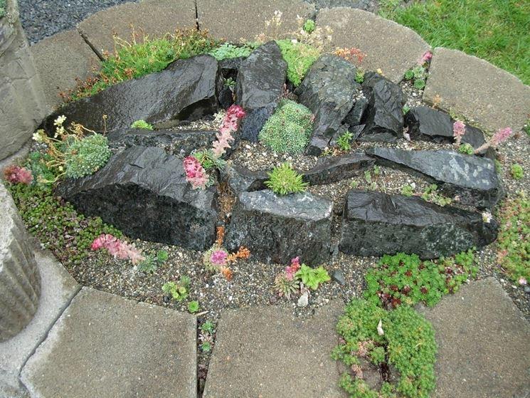 Giardino rocciosog