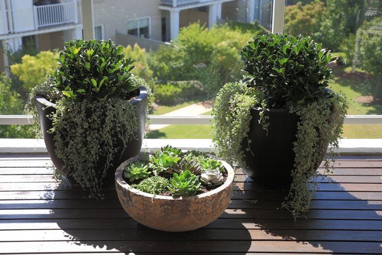 Beautiful vasi da terrazzo gallery idee arredamento casa for Vasi da arredamento design