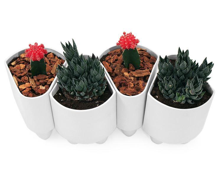 Vasi piante da interno vasi da interno giardino per for Portavasi da interno design