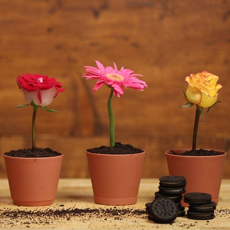 vasi piante in resina