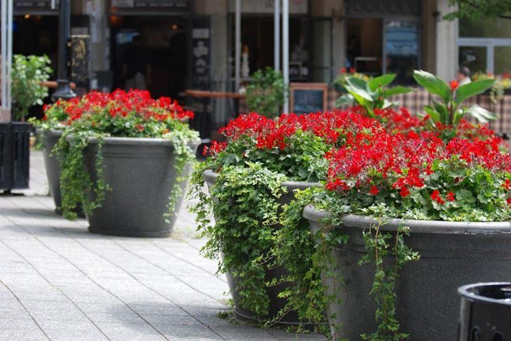 vasi per fiori vasi da giardino tipi di vasi per fiori