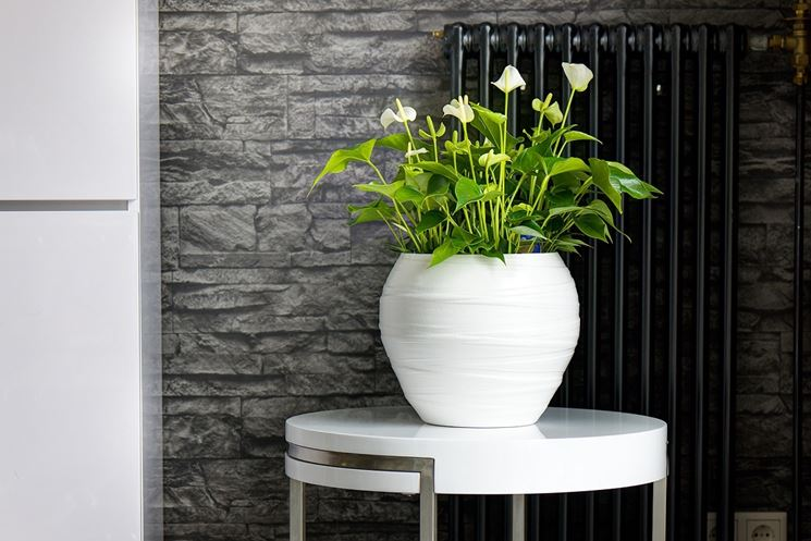 Vasi resina esterno vasi da giardino modelli vasi - Vasi da giardino ...