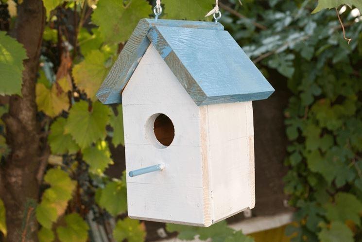 Casette uccelli giardino