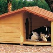 Un modello di cuccia per cani