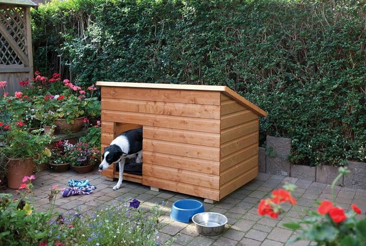 Small Outdoor Dog House