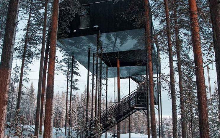 Casa sull'albero trasformata in resort
