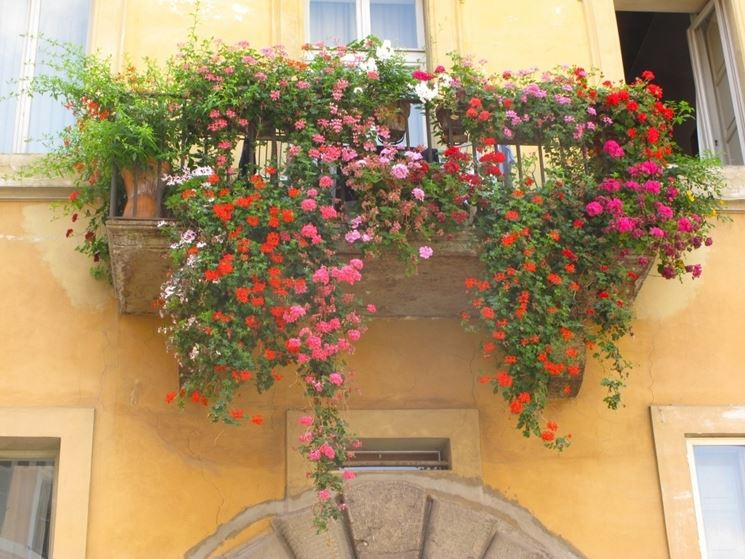 Esempio di balcone fiorito