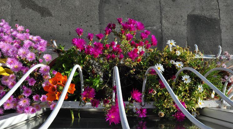 Balcone fiorito con vasi