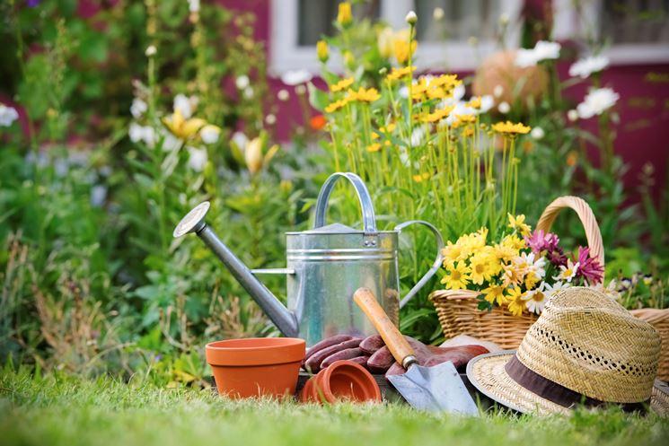 Importanza della concimazione nel giardinaggio