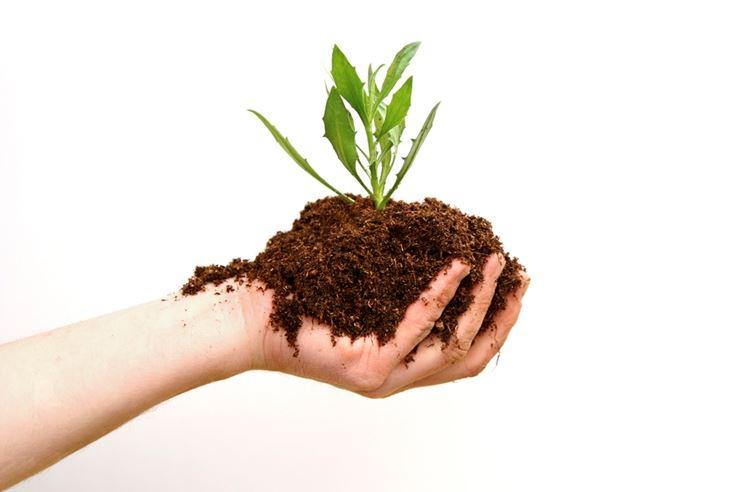 Fertilizzante organico granulare