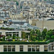 Giardino pensile sulla terrazza di un grande edificio