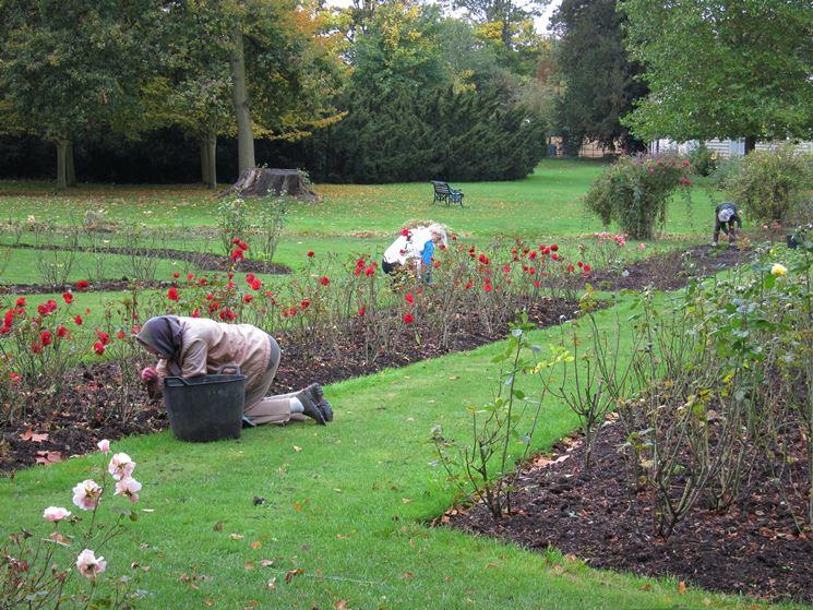 Giardino fai da te giardinaggio decorazione giardino - Compost casalingo ...