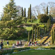 Scale e aiuole in un giardino