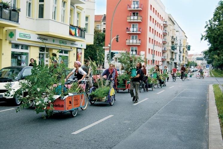 guerrilla gardening in Olanda