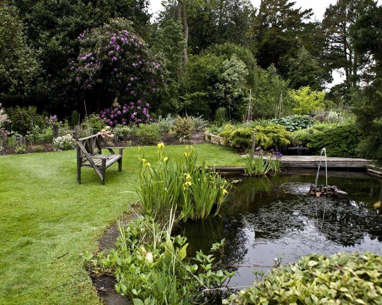 Giardino inglese stagno
