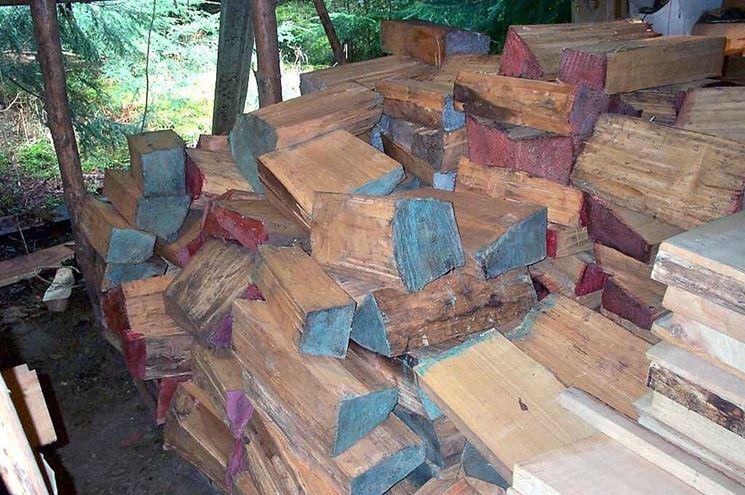 Ciocchi di legno dopo la segatura