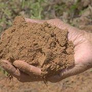 esempio di terreno limoso