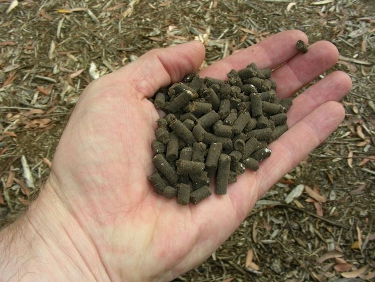 Concime organico in pellet