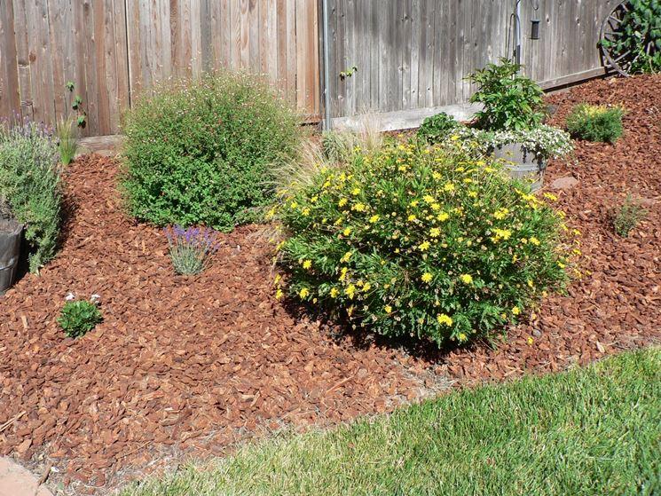 Pacciamatura di corteccia per giardino