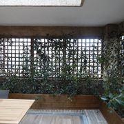 Grigliati in legno con piante rampicanti