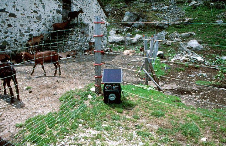 Pannello Solare Per Recinto Elettrico : Recinzione elettrica recinzioni casa utilizzare