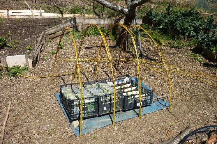 Serra da orto serre per orto serre per orto for Costruire serra legno