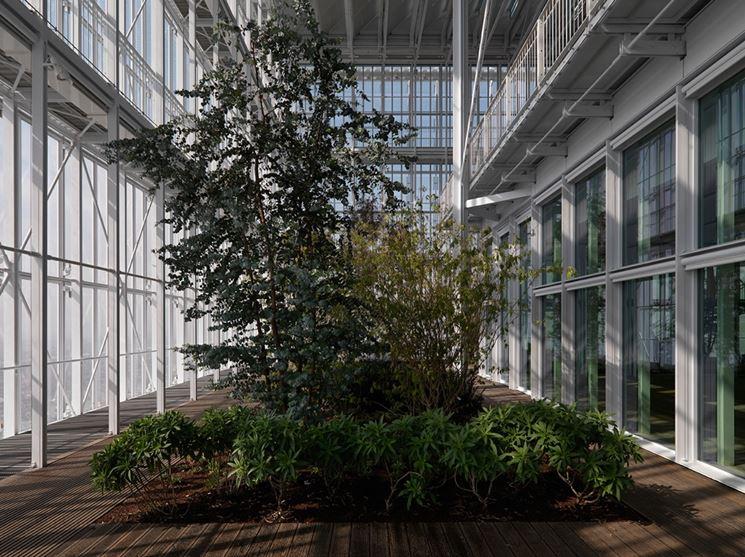 la serra come laboratorio ambientale