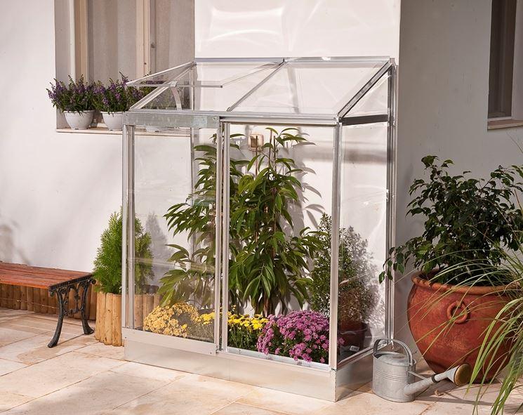 Serre piccole serre per orto come utilizzare serra piccola for Costruire tartarughiera in vetro