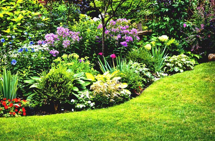 Aiuola da giardino colorata