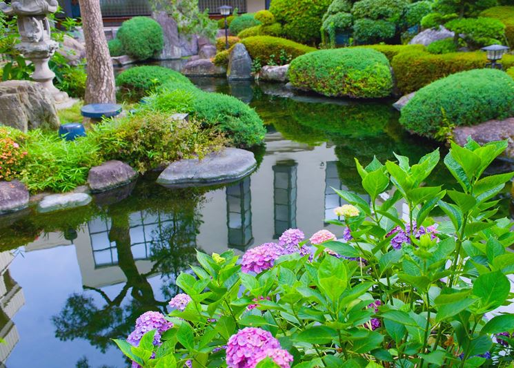Favoloso giardino d'acqua