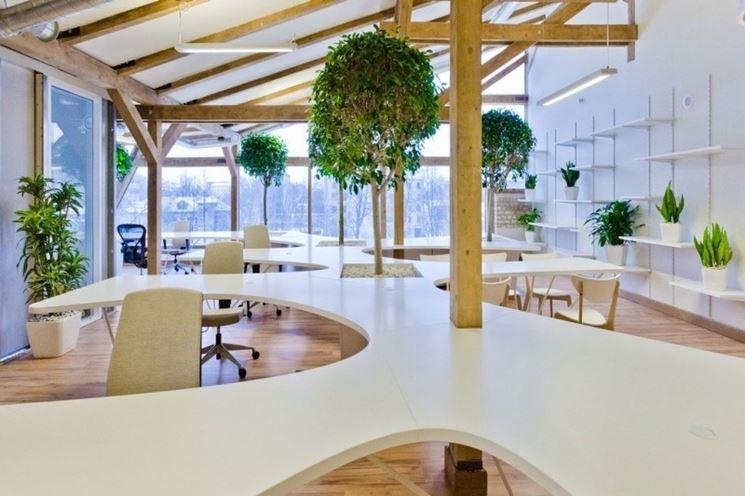 Ufficio verde