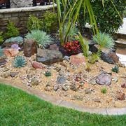 Variegato giardino roccioso