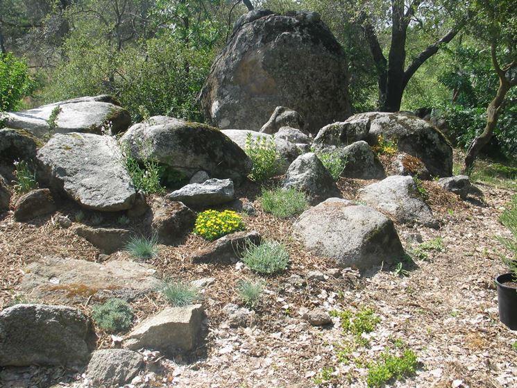 Giardino roccioso naturale