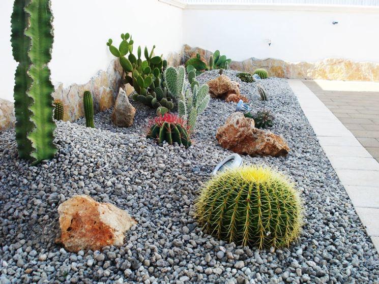 giardino secco con ghiaia
