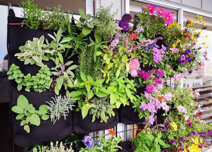 Giardino erbe aromatiche
