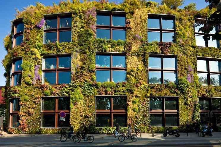 Parete verde su un edificio