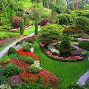 Splendido giardino fiorito