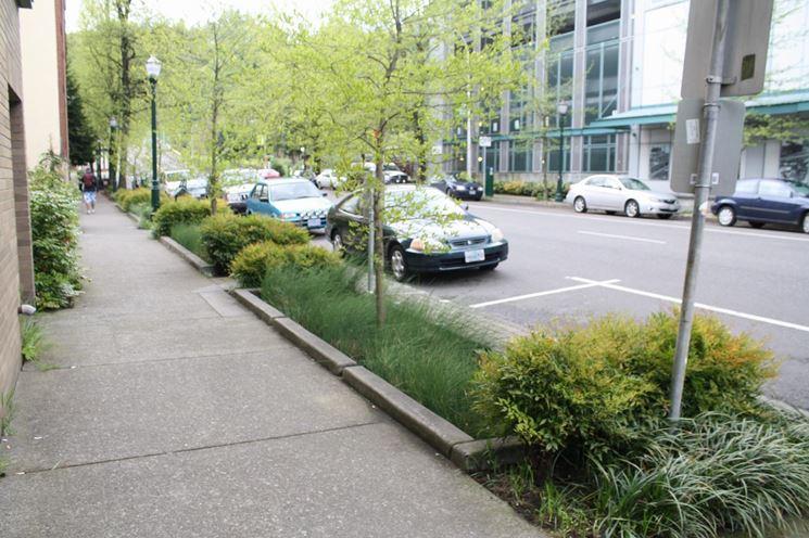 Spazi verdi strada
